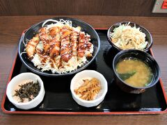 腹が減っては登城は出来ぬ。  かわみなみサービスエリアでジャンボチキンカツ丼を頂きました。