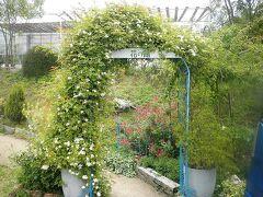 続いて、草枕温泉のすぐ近くにある「花の館」へランチに。 ここはヘルシーでリーズナブルなランチと、ガーデニングで人気の施設です。