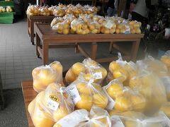 ここは柑橘類が豊富ですが、今から初秋くらいまでは晩柑が人気です。ジューシーで美味しい! 我が家は晩柑と不知火柑、それに卵を購入しました。