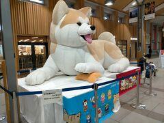 秋田駅に戻りました。