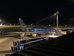着陸時青い飛行機が見えたのでスカイデッキへ。 いました、フライングホヌくん
