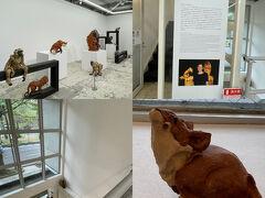 雑誌で見ていた金沢の新しいスポット。 KAMU金沢へ。 アートコレクター林田堅太郎氏が集めた現代アート作品を中心に展示が行われる美術館です。  https://www.ka-mu.com/  荷物をロッカーに預けて観ていきます。 1階はカップルがずっと写真を撮るので大騒ぎしていたので(^^;先に2階から(笑)  動物の彫刻作品を手がけるイギリスのアーティストステファニー・クエールのフロア。粘土作品とのことですが生き生きとして動き出しそう(*´з`)