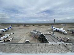 羽田空港第2ターミナル展望デッキです。 天気は曇りですが、雨が降る予報です。