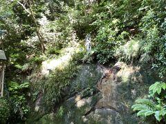 そしてこちらが不動滝 写真では水の流れがまったく見えないですね(^▽^;)