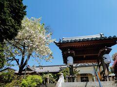 小林寺に寄ってみよう。