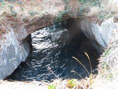 続いて堂ヶ島へ。遊歩道から天窓洞を上から眺める。ここには海側から遊覧船で来ることもでき、遊覧船で来ると、断崖の洞窟の先にぽっかりと上空に穴が開いているという構造らしい。