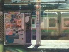 車窓の風景も荒川を超えて郊外の景色に変わっていきます。埼玉県最後の駅、栗橋駅からはJR東日本から東武鉄道の路線に切り替わります。