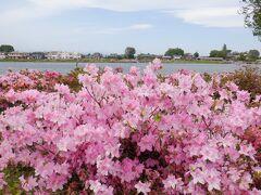 城沼という水辺に公園があります