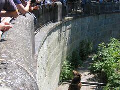 ベルンに到着後、バラ公園までいってピクニック、それから旧市街へ。 ベルンは熊の町