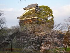 桜が見ごろの熊本城を散策。 こちらの詳細も先般の旅行記でどうぞ。