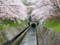 琵琶湖疏水(滋賀県大津市)
