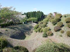 三島辺りは、静岡県でも旧伊豆国になります。静岡県って、伊豆国、駿河国、遠江国と、昔の国で言うと三つなので、かなり広いです。電車でも車でも静岡県は長いって言いますけど、そういう背景から考えると納得がいきます。   山中城は小田原北条氏の西の防御の拠点で、堅固な城でしたが多勢に無勢、豊臣秀吉の大群にかなわず激戦ののち落城。その後廃城になり放置されていました。   建物はないのですが、土塁や堀などの遺構がかなり残っていて、小田原北条氏による独特の城郭の構造が残っています。国史跡、日本百名城にもなり、遺構の保存のために植栽が植えられ、整備されて公園になっています。   こちらは畝堀です。畝のように見えるので畝堀です。敵の攻撃から守るのに効率いい形になっています。
