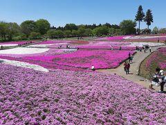続いて、秩父の羊山公園。  この時期は芝桜が名物。 これを見に来ました。  なお、羊山公園に行く前に、ショッピングセンターでテレカンしました。。