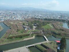 タワーから眺める五稜郭跡、桜がうっすらと色づいているのがわかります
