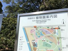 上賀茂神社前からバスに乗り 「京都府立植物園」へ  入園券 200円 子供連れの家族が多いね 外国人もちらほら
