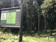 バス乗って駅に向かおうかな~と思ったのですが、せっかくなので、ついでに隣接の瀬谷市民の森を攻略します!
