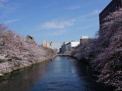 「石島橋」からの眺め  両岸にきれいな桜を眺めることができます 付近では、露店や催しもので賑わっていました