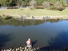 宮沢遊水池。  和泉川に戻って再び上流に進んだ所にあります。 この池には、いつも釣り人がいます。