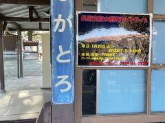 帰りは長瀞駅から野上駅まで一駅だけ電車に乗ります。
