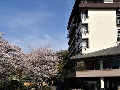 初めて伊豆長岡温泉に泊ります。お宿はニュー八景園。富士山が最上階の浴場から眺められるのが売りの温泉旅館です。