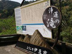 さらにクルマを進めると、石川さゆりさんのヒット曲で全国的に有名になった浄蓮の滝の駐車場があり、滝を見物することに。