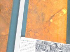 撮影禁止だったと! 不発弾 今でも工事等でよく発見される 戦時中20万トンの弾薬が沖縄に使用されました