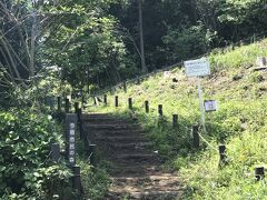 昨日に引き続き並木ルートを、、と思ったのですが今日は寄り道して、今宿市民の森に向かいました。