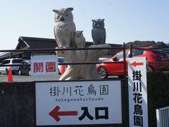 今回の旅の目的は浜松で餃子を食べることですが  まずは掛川花鳥園へ寄り道