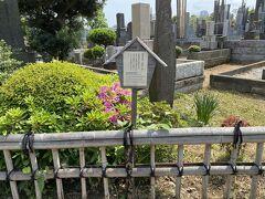 慶喜公の墓所を探してウロウロ