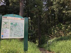 矢指市民の森に再訪! おじいちゃんがフラフラになりながら出て来たので狼狽えました。がんばって!