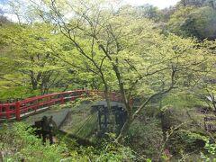 露天風呂があるところまで少し歩きました。 河鹿橋、きれいです。 秋はもっときれいだろうな。