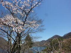 4月末ですが桜が咲いてました。 榛名山は榛名富士と呼ばれてるというガイドを読み、ここに来ましたが、 榛名山は小さな山でした。