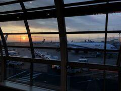 早朝5時前にチェックアウトして、羽田空港で日の出を迎えました。 GoToが利用できるようになったからか、9月に来たときよりも混んでました。