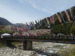 月川温泉郷は昼神温泉より上流の花桃の里です。 晴天にこいのぼりが気持ち良さそうに泳いでいました。