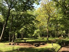 木が生い茂る自然の公園です。