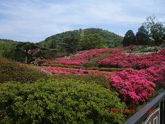 小室山公園つつじ園
