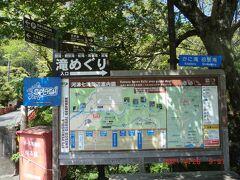 「河津七滝」:名が付く滝は7つあります。上流までバスで行き下ったほうが楽。