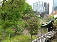 湯島聖堂の新緑