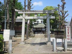 南阿佐ヶ谷駅から8分ほど、杉並高校向かいに建つ成宗須賀神社。 石造り鳥居から階段を上がったところに丸石をセメントで固めた台座の狛犬が1対あります。狛犬のそばには旧拝殿を改築した神楽殿が、正面には木造社殿があります。