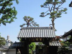 浄雲寺から100mほど、閑静な住宅地に建つ長龍寺。 江戸時代には世良田家や槍の名家・長坂家、山名宗全を生んだ山名家などの菩提寺として隆盛をきわめたそうです。こじんまりしているもののどっしり構えた1737年に建立された木造の山門、1756年建造の本堂、境内の芝生、枝ぶりが素晴らしい大きく成長した数本の松、手入れの行き届いた庭など、落ち着きが感じられる寺です。