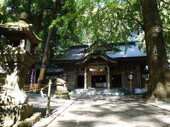階段の上には社殿が。  何本もの杉の巨木が取り囲んでいます。