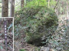 登山道に入ると すぐ現れる「金時手鞠石」  力持ちの金太郎はこれを手鞠にして遊んだという しかし完全球体じゃないから、これじゃ大変だったろう