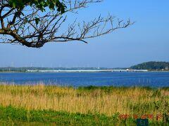 景色はこんな感じ、夏は花火大会も開催されます。