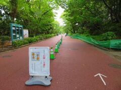 公園内はお花見の時期と同じ一方通行が継続されていた。