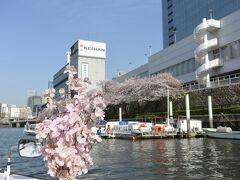 クルーズ船には桜の花(造花ですが)取り付けられて、気分を盛り上げてくれます。