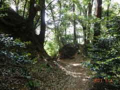 私の目的は・・・小山総合公園ではなく、隣接した鷲城。 思っていたより素敵でした!