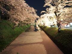 晩ごはんの後はライトアップを見に弘前公園に戻ってきました。  ホントに終日弘前公園にいましたね😅