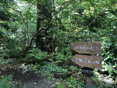 真鶴岬の中は、ところどころ遊歩道が整備されていました。 ここは、森林浴遊歩道の入口。