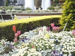 中華街からすぐにある『山下公園』にやって来ました 隅々まで手入れの行き届いた花壇が見頃です