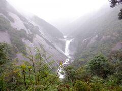 V字の花崗岩の渓谷 花崗岩は1枚岩だそうです 巨大Σ(゚Д゚)  屋久島滞在中の唯一の雨の日 降るなら今日がいいかなと思ってたんで、よかったです 滝はやっぱり雨の日が水量が多くていいみたいです